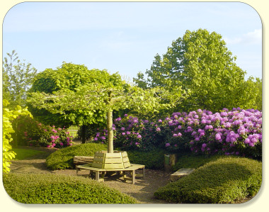 Arboretum Boomkwekerij Albert Leemreize